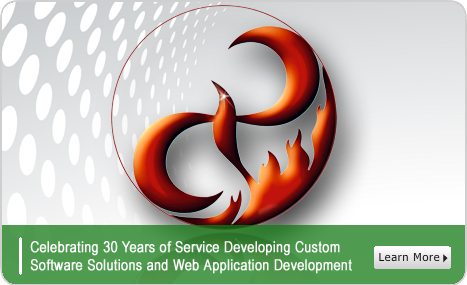 Celebrating 30 years in software, custom application and web development